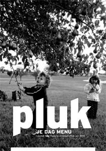 PLUK_Header_zww